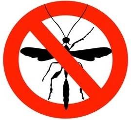 Lutte anti-moustique