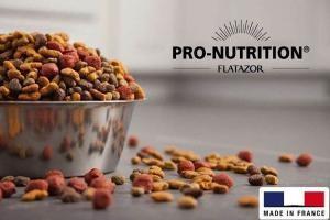 PRO NUTRITION FLATAZOR pour les chiens et les chats